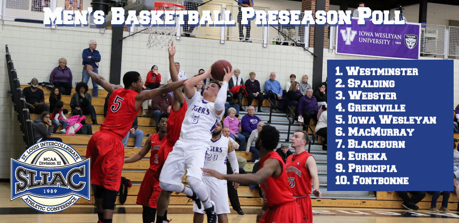 Photo for Tigers Slated to Finish Fifth in SLIAC Preseason Poll