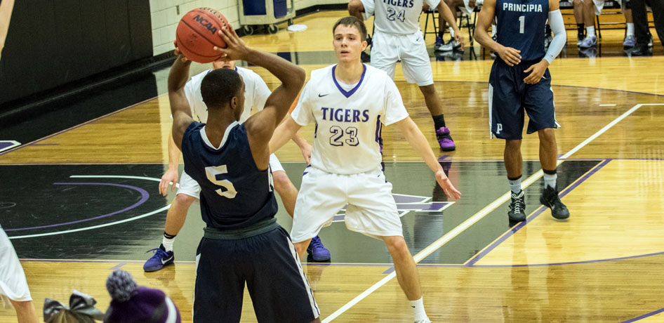 Photo for Tigers Sweep MacMurray in SLIAC Play, Win Third Straight Game