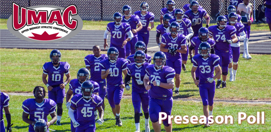 Photo for UMAC Preseason Poll Tabs Tigers in Ninth Place