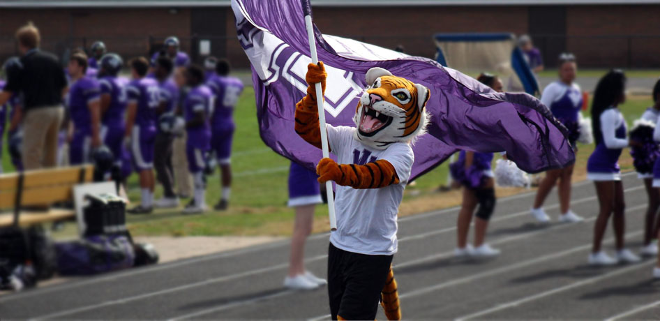 Photo for Tiger Athletics enhances ways to stay connected