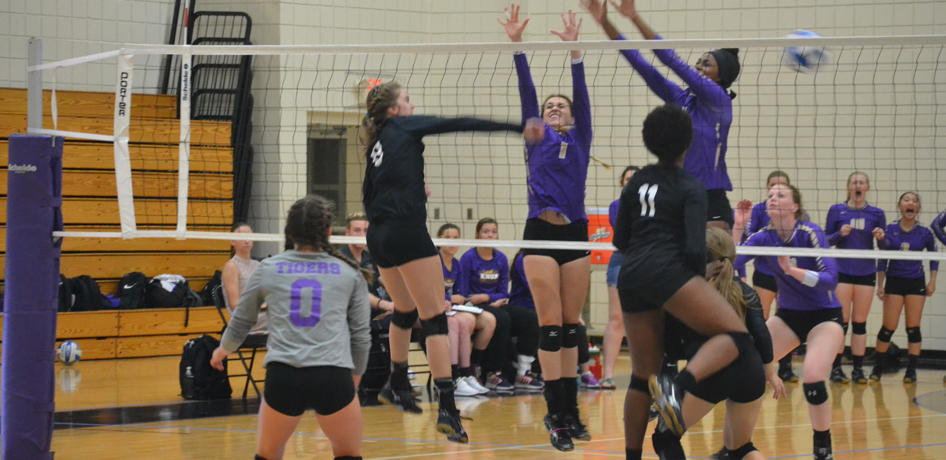 Photo for Tigers Drop Three Sets to Principia